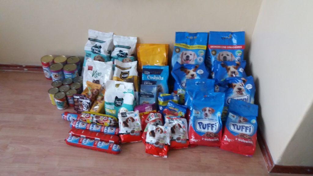 """Pomagamy bezdomnym zwierzętom z """"Azylu"""" w Baranowie Sandomierskim"""